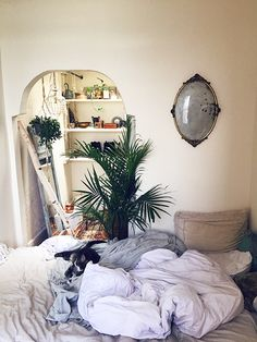 Post image for Embracing Small-Space Living
