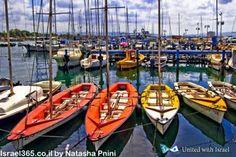 The harbor at Haifa