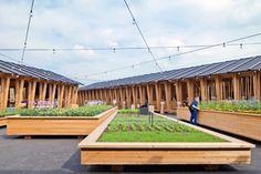Slow Food Pavilion by Herzog & de Meuron at Milan Expo 2015 » Retail Design Blog