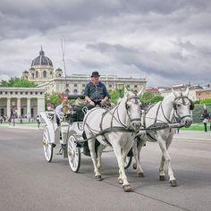 Leica, Horses, Explore, Photo And Video, City, Travel, Animals, Instagram, Viajes