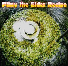 West Coast Brewer Pliny the Elder Homebrewing Recipe Brewing Recipes, Homebrew Recipes, Beer Recipes, Ipa Recipe, Pliny The Elder, More Beer, Brewing Equipment, Home Brewing Beer, Grain Foods