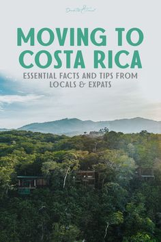 Thinking of moving to Costa Rica for a life in paradise? Enjoy rainforests, beaches, and a pura vida lifestyle that expats in Costa Rica can't get enough of. Get the scoop on everything you need to know about moving to Costa Rica from the cost of living in Costa Rica to buying property in Costa Rica, and more!#CostaRica #CostaRicaTravelTips #ExpatCostaRica #PuraVida #DiscoverCostaRica Moving To Costa Rica, Living In Costa Rica, Costa Rica Travel, Costa Rica Facts, Travel Advice, Travel Tips, Life In Paradise, Rainforests, Cultural Experience