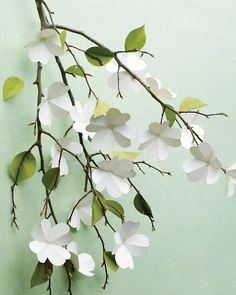 Four-petaled paper dogwood flowers offer a way to enjoy spring year-round. Making them calls for basic folds and cuts -- no pruning required. Stamp on the details, affix to a branch, and display in a vase or on a table as an everlasting centerpiece.