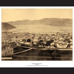 Dunedin Genealogy, Paris Skyline, Roots, Princess, Travel, Design, Viajes, Traveling, Family Tree Diagram