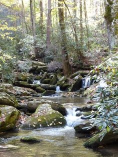 Catawba Falls in Asheville no not in Asheville but really in Black Mt. and this river flows all the way  to Charlotte, then south in SC. A creek flowing to the Catawba behind my childhood home. Catawba is the name of the Native Population that lives in and around Piedmont  area of NC