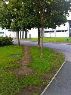 desire path, chichester university.