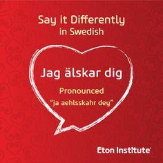 I love u in swedish language
