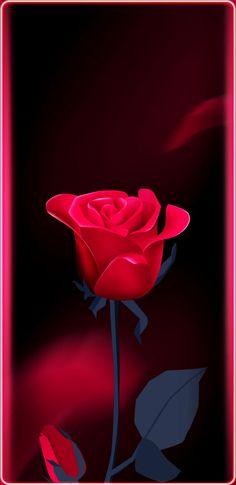 Rote Rose. Danke Daizo💗 Hd Dark Wallpapers, Wallpaper Images Hd, Abstract Iphone Wallpaper, Sad Wallpaper, Cute Wallpaper Backgrounds, Cellphone Wallpaper, New Flower Wallpaper, Beautiful Flowers Wallpapers, Aesthetic Roses