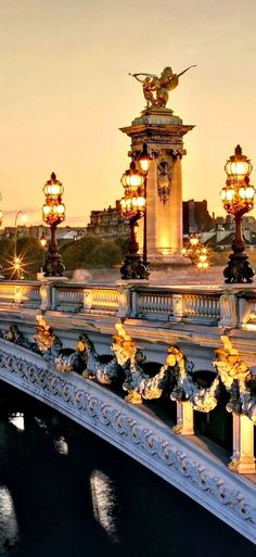 Paris, France. Got to stand on beautiful bridges, this one shows up on movies a lot