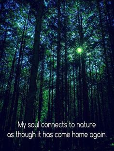 New Ideas Nature Inspiration Quotes Mother Earth - Erde Feral Heart, Tree Quotes, Quotes About Trees, Nature Quotes Adventure, Pantheism, Business Coach, Forest Bathing, Wanderlust, Nature Tree