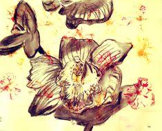 Intervención, Carbonilla Flores