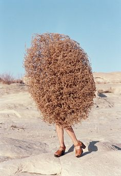 Charlie Engman #bushwoman