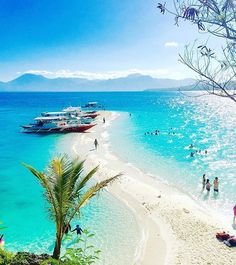 Check out this SANDBAR in Bluewater Sumilon Island Resort in Cebu, Philippines Les Philippines, Philippines Beaches, Cebu Philippines Travel, Thailand Travel, Exotic Beaches, Tropical Beaches, Palawan, Siargao, Dream Vacations