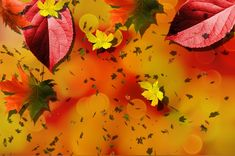 Free Image on Pixabay - Autumn, Fall, Background, Yellow Free Pictures, Free Images, Fall Background, Orange Park, Autumn Fall, Vacation Trips, Budget Travel, Parks, Bucket
