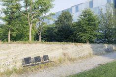 Park Novartis Campus Basel. Inspired by local geology / Vogt Landschaftsarchitekten