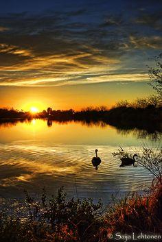 Dreamy Sunset by CeeThruMyEyes.dev...