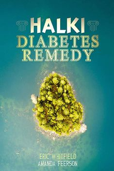 Halki Diabetes Remedy Book by Eric Whitfield and Amanda Feerson.Get A Copy of The Halki Diabetes Remedy Today and Receive All Exclusive Bonuses For Free. Causes Of Diabetes, Cure Diabetes, Diabetes Books, Diabetes Mellitus, Gestational Diabetes, Blood Sugar Levels, High Blood Sugar, Shopping, Drink