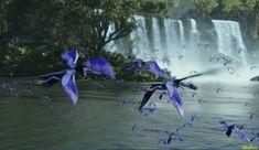 El tetrapteron ( nombre Na'vi : fkio ) es una clase de flamenco aves-como que parecen casi la Tierra -como hasta que uno se da cuenta que tiene cuatro alas, con dos a cada lado. El tetrapteron también cuenta con una cola doble único que se utiliza para equilibrar su peso corporal ya que la caza o de tierras.