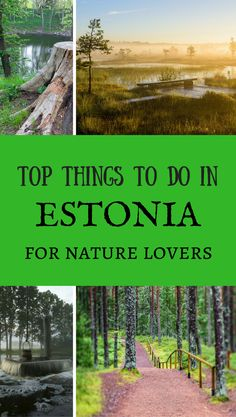 The best natural attractions in Estonia. *********************************************************************** Estonia Top Things To Do | Top Things To Do in Estonia | Estonia Highlights | Estonia Attractions | Estonia Travel    Ideas | #estonia  #estonianature