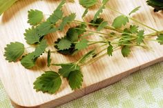 Perennial vegetables, perennial, vegetable gardening, garden, rhubarb