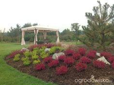 Ogród w Puszczykowie - strona 101 - Forum ogrodnicze - Ogrodowisko