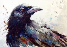 Bev Jozwiak Bev Jozwiak has earned her signature status in the American Watercolor Society, the National Watercolor Society, Wate. Watercolor Flower, Watercolor Sketch, Watercolor Artists, Watercolor Animals, Watercolor Paintings, Watercolors, Watercolor Tutorials, Crow Art, Raven Art