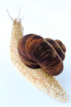 Needle Felted Land Snail Large Snail Sculpture by YvonnesWorkshop