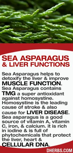 Sea #Asparagus #benefits.  Learn to love nutrition and be healthy at http://drmalikov.com via dherbs.com