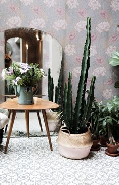 my scandinavian home: My stay at the beautiful Hotel Henriette, Paris - plants against floral wallpaper. Photo - Niki Brantmark.