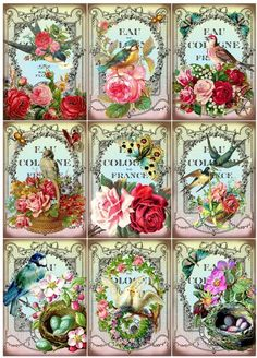 VIntage Perfume Label Clipart - features colorful birds, nests, and flowers. Downloadable and printable images for crafts, scrapbooking, papercrafts, and all kinds of embellishments.