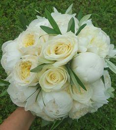 Olivo peonie rose inglesi