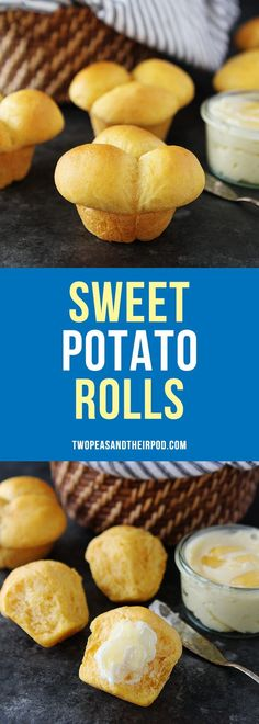 Sweet Potato Rolls are the perfect dinner rolls for Thanksgiving or for any meal! #rolls #sweetpotato #ThanksgivingRecipes