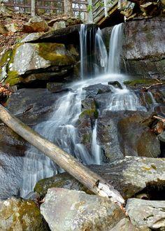 Barnes Creek Falls, Cohutta Wilderness