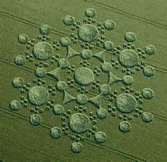 crop circles 2015 - Bing Images