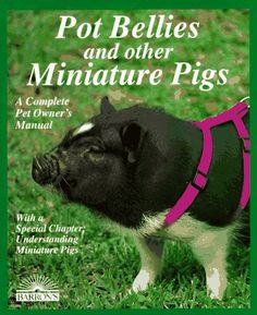 Bestseller Books Online Pot Bellies and Other Miniature Pigs (Complete Pet Owner's Manual) Pat Storer $8.99  - http://www.ebooknetworking.net/books_detail-0812013565.html