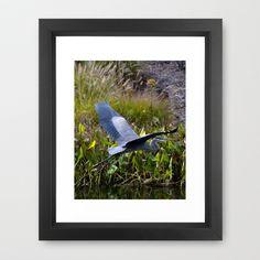 Blue Flyer Framed Art Print by Richard Shawn Faust - $31.00