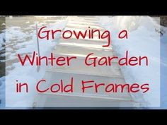 Building a garden cold frame is a great additional to your garden. Cold frames allow you to extend your garden season all the way through the winter!
