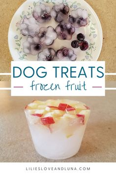 Frozen fruit dog treats are an easy treat to customize for your dog. Frozen Pumpkin, Frozen Fruit, Fruit Combinations, Dog Ice Cream, Frozen Dog Treats, Pumpkin Dog Treats, Types Of Fruit, Different Fruits, Dog Treat Recipes