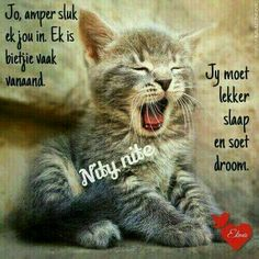 Good Night Blessings, Good Night Wishes, Good Night Sweet Dreams, Good Night Quotes, Good Night Sleep Tight, Goeie Nag, Afrikaans Quotes, Heres To You, Nighty Night