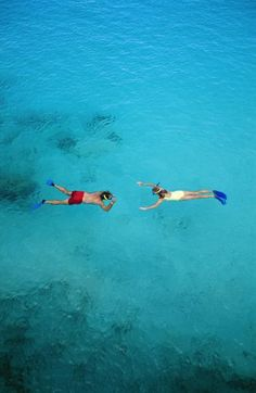 Snorkeling at Riviera Maya, Mexico. Wanna get away? Try Playa...Find your dream home here, http://pinterest.com/mexicohomesales/