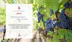 """Il 2005 da il via alla """"vinificazione separata"""" all'interno della nuova cantina di Fonterutoli. @marchesimazzei #fonterutoli #marchesimazzei #wine #tuscany"""