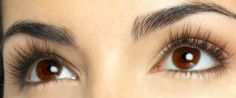 Eyelashes: Your Guide to the Ultimate Curl | Beauty Collection | the blog