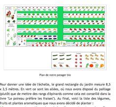 Periodic Table, Vegetable Gardening, Organisation, Periotic Table