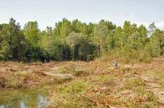 Il raggio riflesso: Chi uccide i fiumi toscani?