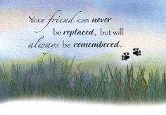Your friend can never be replaced...  ♥