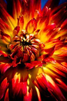 Tahiti Sunrise Photographer: Joel DeLos Loftus.