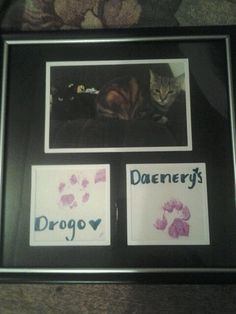 Dollar tree picture frame $1.00 picture printed from walmart 28 cents and some non toxic acrylic paint for their paw prints :) paint pen for their names we are sooo those pet people lol