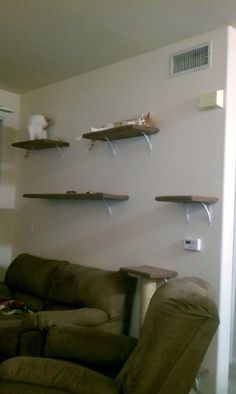 DIY Wall Mounted Cat Tree - Imgur detailed instructions