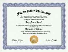 Falcon Degree: Custom Gag Diploma Doctorate Certificate (Funny Customized Joke Gift - Novelty Item) by GD Novelty Items. $13.99. One customized novelty certificate (8.5 x 11 inch) printed on premium certificate paper with official border. Includes embossed Gold Seal on certificate. Custom produced with your own personalized information: Any name and any date you choose.