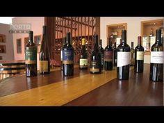Alijó, produção de vinho na Quinta das Carvalhas